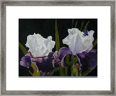 Iris Framed Print by Dwight Williams