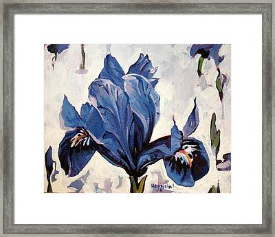 Framed Print featuring the painting Iris Snow by Tim  Heimdal