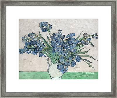 Irises, 1890 Framed Print