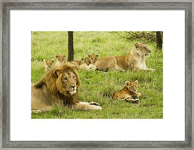 It's All About Family Framed Print
