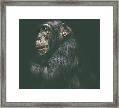 Its Cold Outside Framed Print