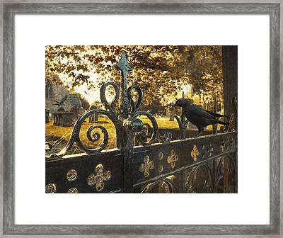 Jackdaw On Church Gates Framed Print by Amanda Elwell
