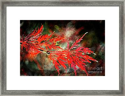 Japanese Maple - Digital Paint Framed Print by Debbie Portwood