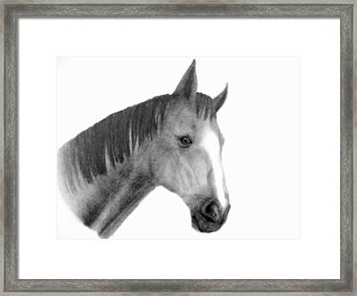 Jess Framed Print by Susan Tilley