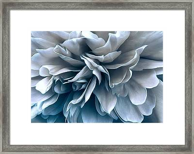 Framed Print featuring the photograph Jet Stream by Darlene Kwiatkowski