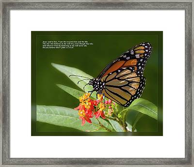 Framed Print featuring the photograph John 11 25-26 by Dawn Currie