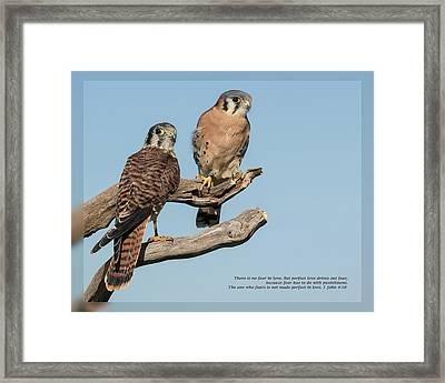 Framed Print featuring the photograph 1 John 4 18 by Dawn Currie