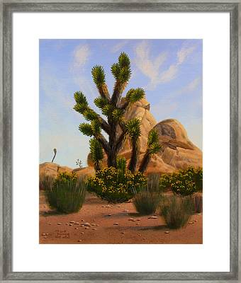 Joshua Tree Framed Print