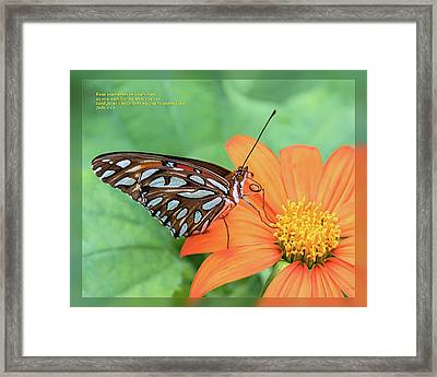Framed Print featuring the photograph Jude 1 21 by Dawn Currie