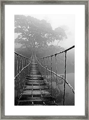 Jungle Journey Black And White Framed Print