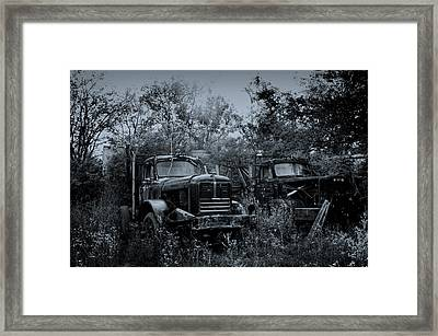 Junkyard Dogs II Framed Print by Off The Beaten Path Photography - Andrew Alexander