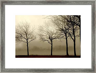 Just A Phase Framed Print by Diana Angstadt