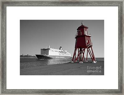 Just Arriving Framed Print by Nichola Denny