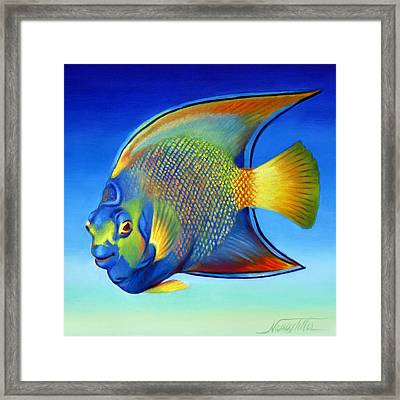 Juvenile Queen Angelfish Framed Print by Nancy Tilles