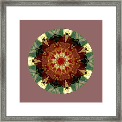 Kaleidoscope - Warm And Cool Colors Framed Print