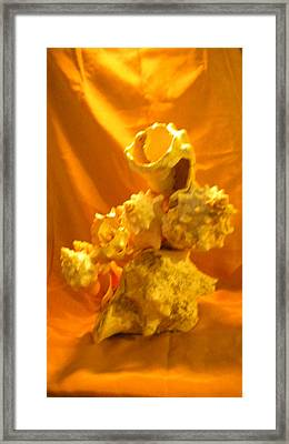 Karco Gold Framed Print by Arlin Jules