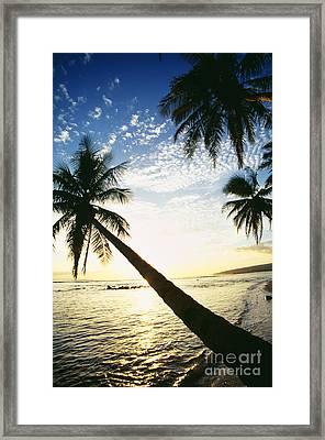 Kauai, Waimea Framed Print by Peter French - Printscapes