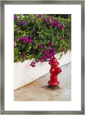 Key West Fire Hydrant Framed Print