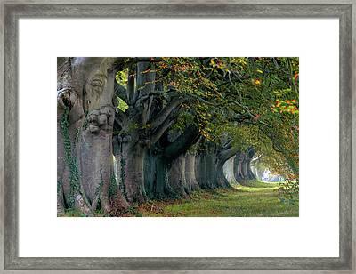Kingston Lacy - England Framed Print
