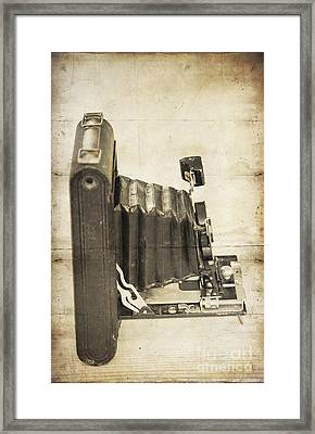 Kodex Framed Print by Svetlana Sewell