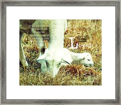 L Is For Lamb Framed Print