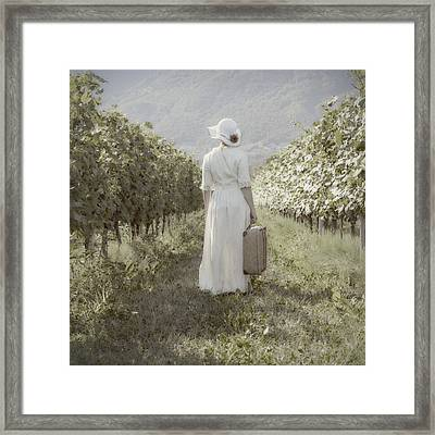 Lady In Vineyard Framed Print