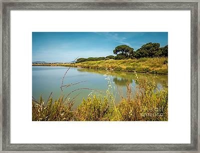 Lake Landscape Framed Print by Carlos Caetano
