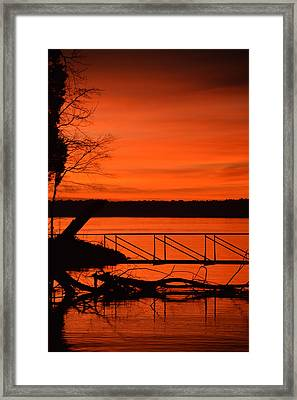 Orange You Glad I Took This Shot Framed Print by Lisa Wooten
