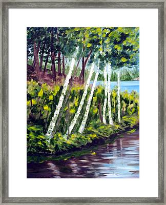 Lakeside Birches Framed Print by Anne Trotter Hodge