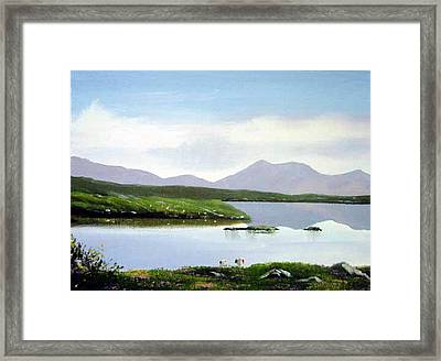 Lakeside Sheep Framed Print by Cathal O malley