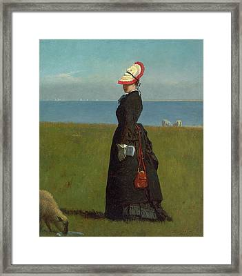Lambs Nantucket Framed Print