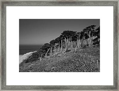 Lands End In San Francisco Framed Print