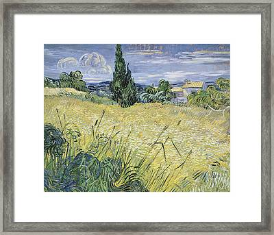 Landscape With Green Corn Framed Print by Vincent Van Gogh