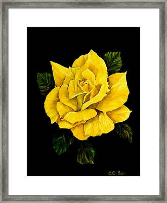 Large Yellow Rose Framed Print