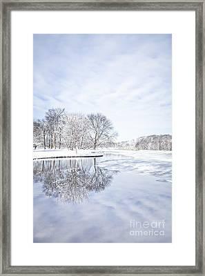 Last Winter's Dream Framed Print