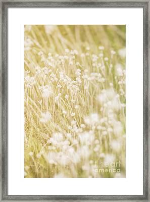 Lazy Summer Days.. Framed Print by Nina Stavlund