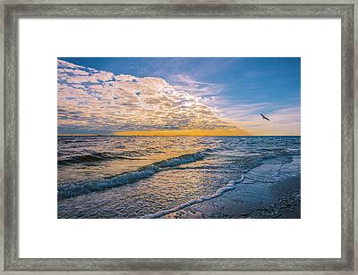 Framed Print featuring the photograph Leading Edge by Steven Ainsworth