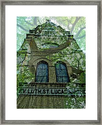 Leaves Of The Tree Framed Print