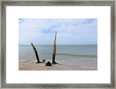 Left Behind Framed Print by Robert Wilder Jr