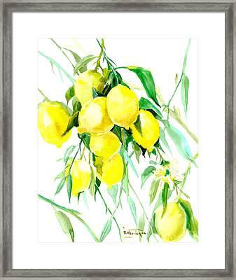Lemon Tree Framed Print by Suren Nersisyan