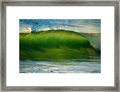 Let It Flow Framed Print by Dianne Cowen