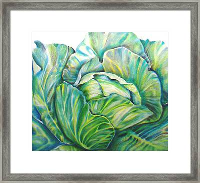 Lettuce Framed Print by Cami Rodriguez