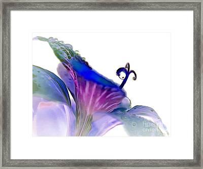 Life In Bloom Framed Print by Krissy Katsimbras