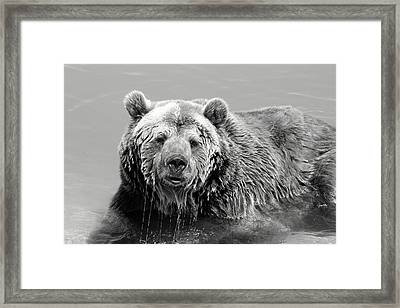Life Is Good Framed Print by Fiona Kennard