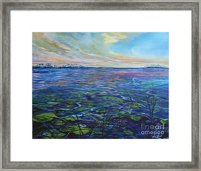 Lilly Pads  Framed Print by Michele Hollister - for Nancy Asbell