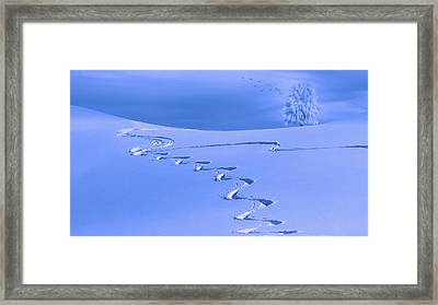 Lines In The Snow Framed Print by Komposita