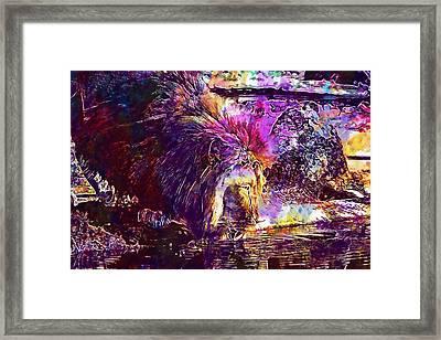 Framed Print featuring the digital art Lion Cat Zoo Male Big Cat Africa  by PixBreak Art