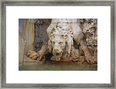 Lion In The Fountain Framed Print by JAMART Photography