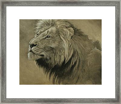 Lion Portrait Framed Print by Aaron Blaise