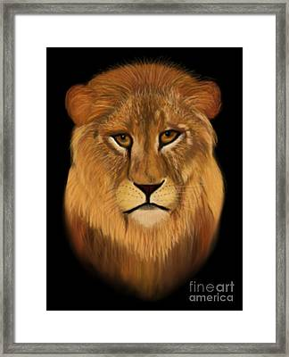 Lion - The King Of The Jungle Framed Print